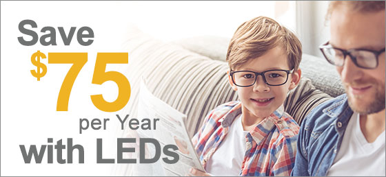 Save $75 per Year with LEDs